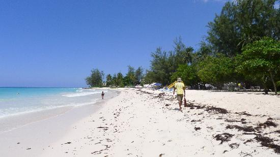Hastings, Barbados: Rockley Beach (aka Accra Beach)