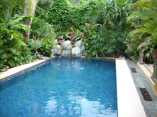 Casa Candiles Inn: The wonderful relaxing pool to cool off or just float around in the sun.