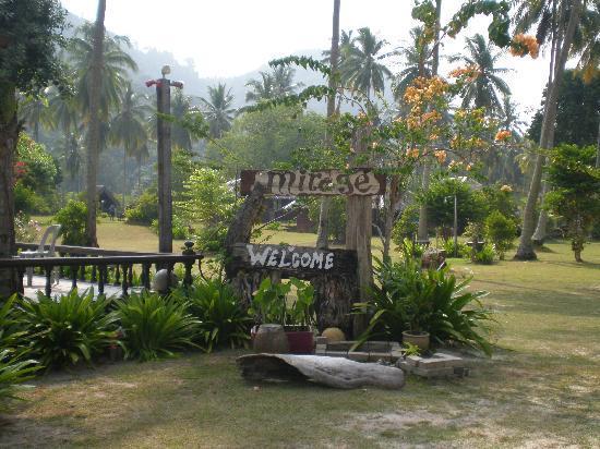 Mirage Island Resort: Welcome!