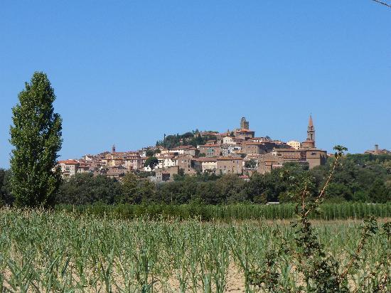 Casa Portagioia: Castiglion Fiorentino (town nearby)