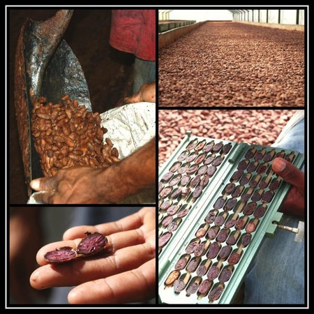 The Private Chocolate Tour: Chocolate