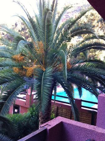 Hôtel Corsica : Vue depuis la chambre