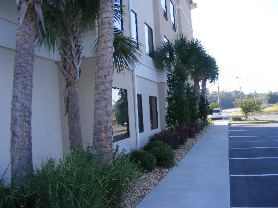 BEST WESTERN PLUS Valdosta Hotel & Suites : side