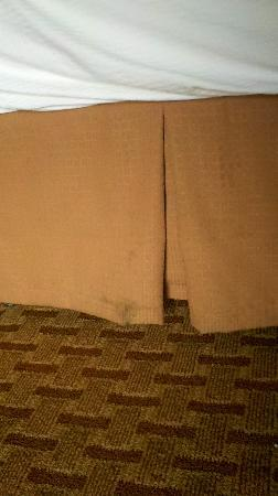 Chateau Resort & Conference Center: Even the bedskirt was filthy!