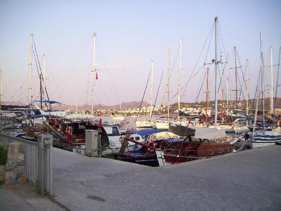 Ambrosia Hotel: Bitez Harbour