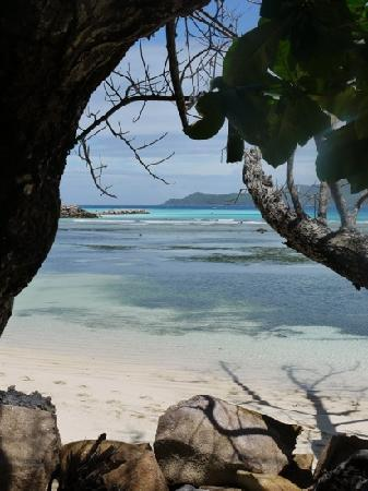 Chateau St Cloud : view towards praslin from la digue