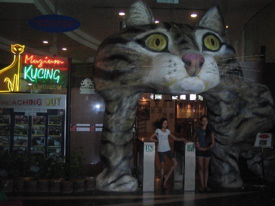 Cat Museum entrance