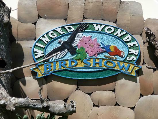 Fresno Chaffee Zoo: Winged Wonders The bird Show