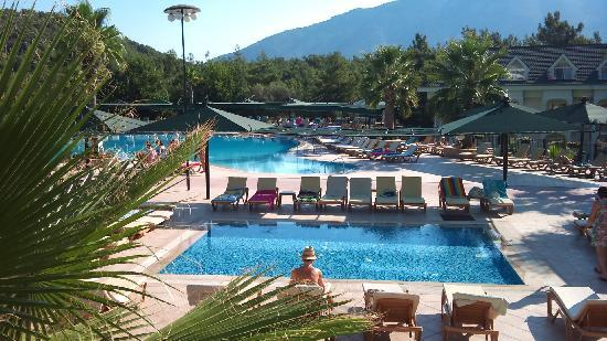 Green Forest Hotel: Pool View 1