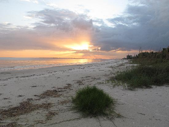 Palm Terrace Resort: Strand