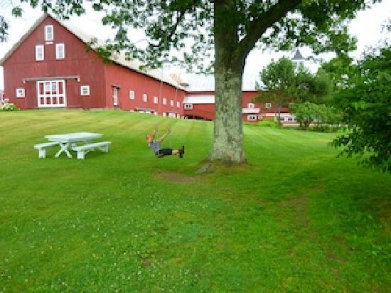 Inn at Mountain View Farm: 440 acre farm estate