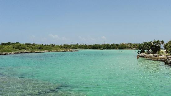 "Think Organik Mobile SPA: ""secret"" lagoon where the locals go"