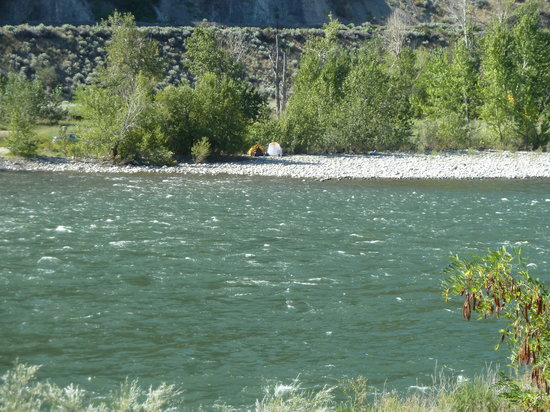 Acacia Grove RV Park & Cabins : View of Fraser River from the RV park - brave tenters