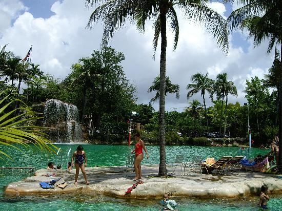 Venetian Pool Coral Gables 2018 All You Need To Know