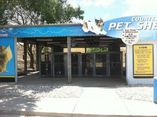 Sea World Dog Kennel