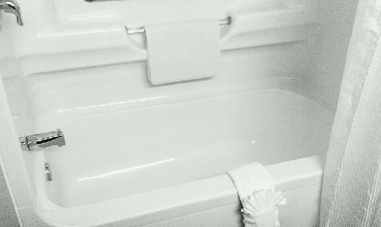 Best Western Plus Dartmouth Hotel & Suites: Clean Bathtub