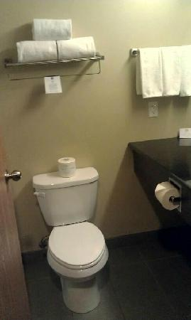 Best Western Plus Dartmouth Hotel & Suites: Clean Bathrooms