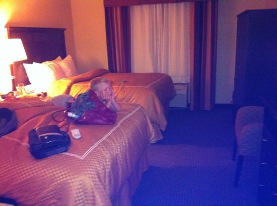 Hampton Inn Searcy: double room