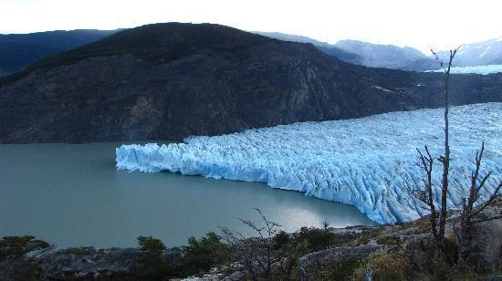 Glacier Grey: Glaciar Grey desde un mirador.