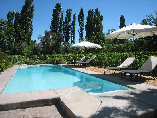 Finca Adalgisa Wine Hotel, Vineyard & Winery: Pool