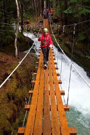Grizzly Falls Ziplining Expedition Skagway All You