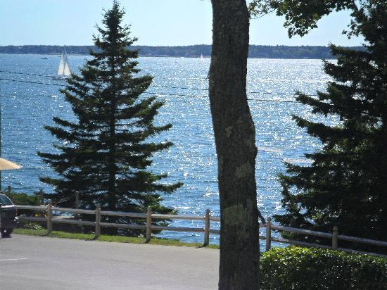 Spruce Point Inn Resort and Spa: View from the Balsam lodges