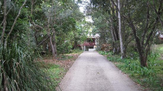 Mt Warning Bed and Breakfast Retreat: A beautiful walk to Mt Warning