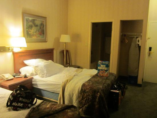 Quality Inn & Suites Downtown : Hotel room