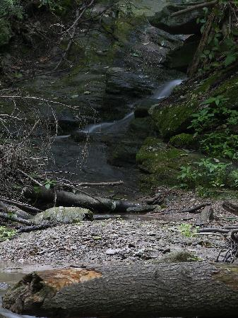 Lancaster County, PA: Waterfall in Tucquan Glen Nature Conservancy