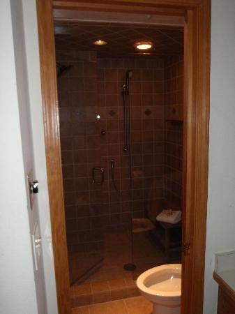 Chamonix: Master Bath Steam Shower