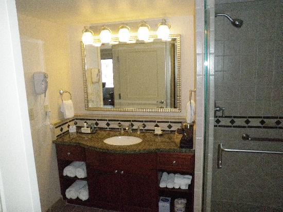 โรงแรมฮิลตัน แกรนด์ เวเคชั่น คลับ ออน เดอะ ลาสเวกั: Bathroom