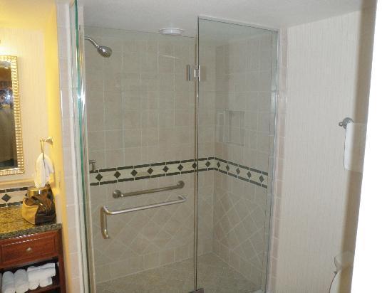 โรงแรมฮิลตัน แกรนด์ เวเคชั่น คลับ ออน เดอะ ลาสเวกั: Shower
