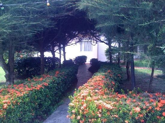 Sepang, Malasia: Garden