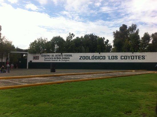 Resultado de imagen para zoológico los coyotes