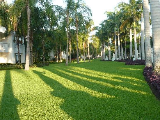 Grand Sunset Princess All Suites Resort: giardino