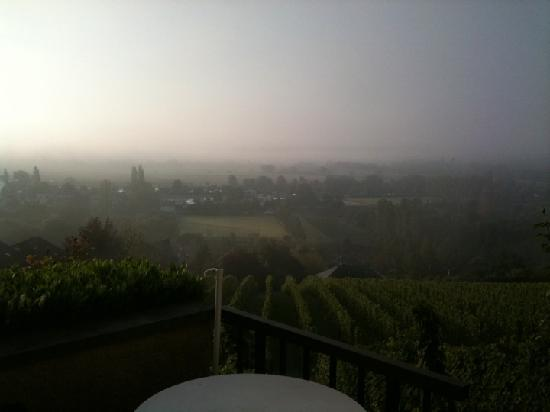 Remich, Luxemburg: This was looking out of our room at the vineyards
