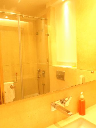 Almondz Hotel: In refelction the shower area, the water  pressure was very very good! Hot and cold