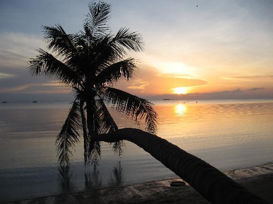 Jungle Hut Bungalow and Hotel: Sun set on Koh Phangan