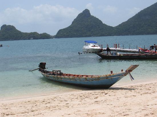 Jungle Hut Bungalow and Hotel : Fishing boats