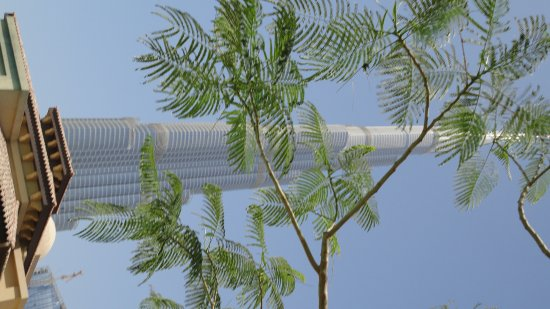 โรงแรมเดอะพาเลสดิโอด์ทาว: Blick von Pool auf den Burj Khalifa