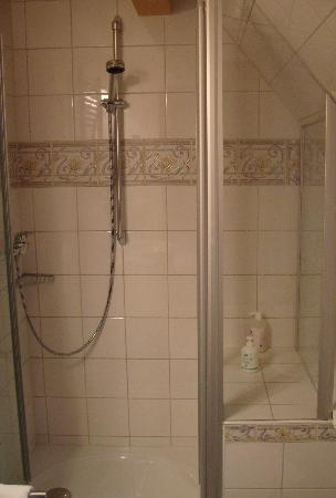 Old Doctor's House Bed & Breakfast: shower