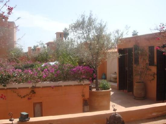 Riad Hayati: The roof garden