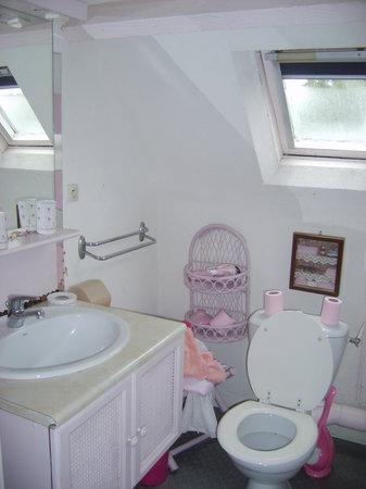 Le Clos des Ombrages : salle de bain, la douche est à gauche en entrant