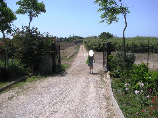 Donnalucata Hotel & Resort: Strada per andare dall'hotel alla spiaggia