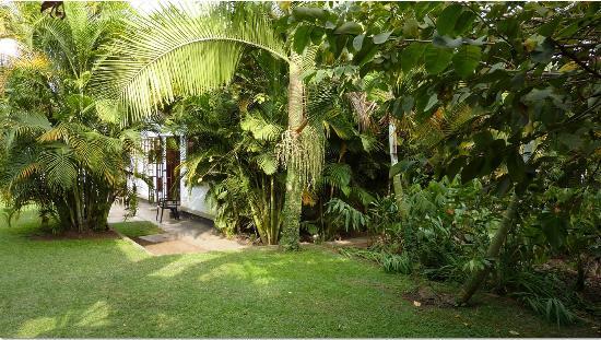Christina House & Mini Lodge: beutiful view