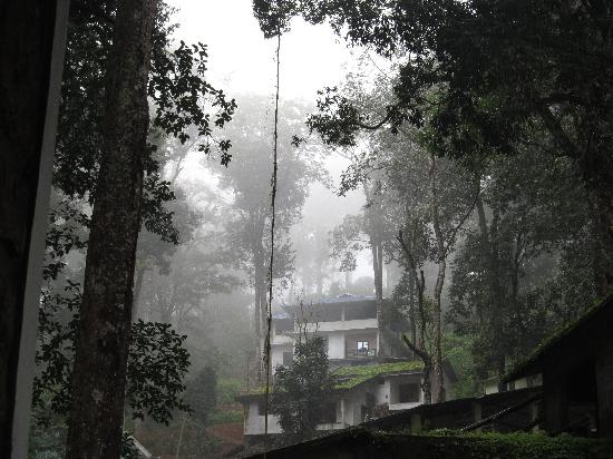 Greenspaces B&B Munnar: the haunting mist at greenspace