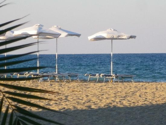Club Hotel Miramar: La plage vue du bar sur la plage