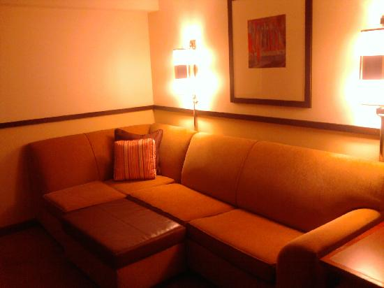 Hyatt Place Cincinnati-Northeast: Living Room