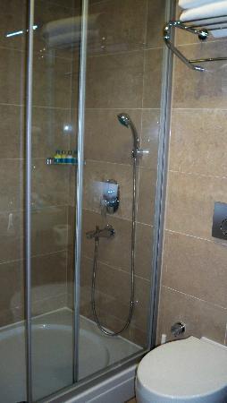 Neorion Hotel: ducha