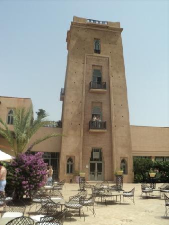 Club Med Marrakech La Palmeraie: la palmeraie